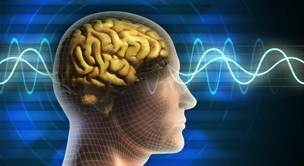 brain-wave-1