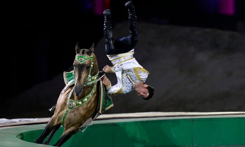 turkiman-horse