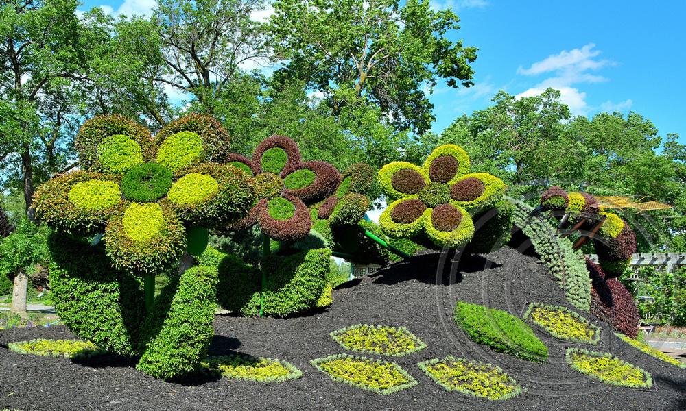 Flowers-in-Jardin-Botanique-de-Montreal