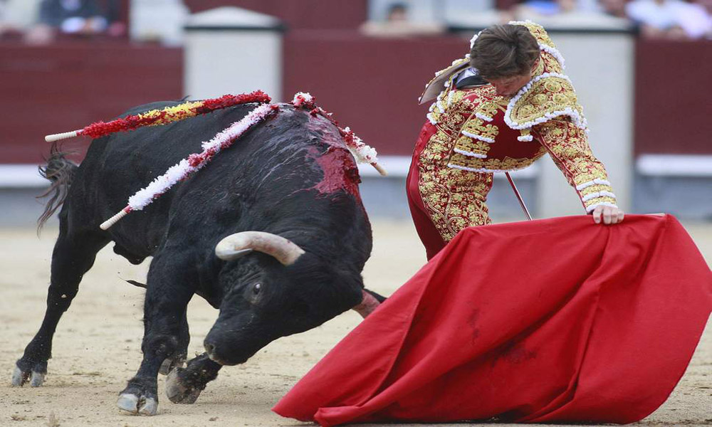 -BULLFIGHTING