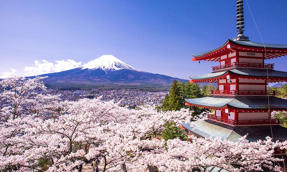 حقایق جالبی که بای در مورد ژاپن بدانید