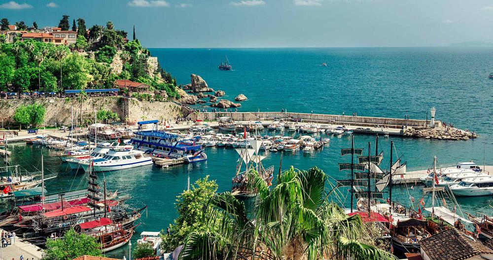 ترکیه بزرگ ترین کشت کننده فندق در دنیا