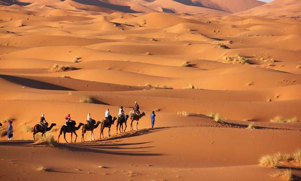 مناطق بیابانی یا نیمه بیابانی عربستان