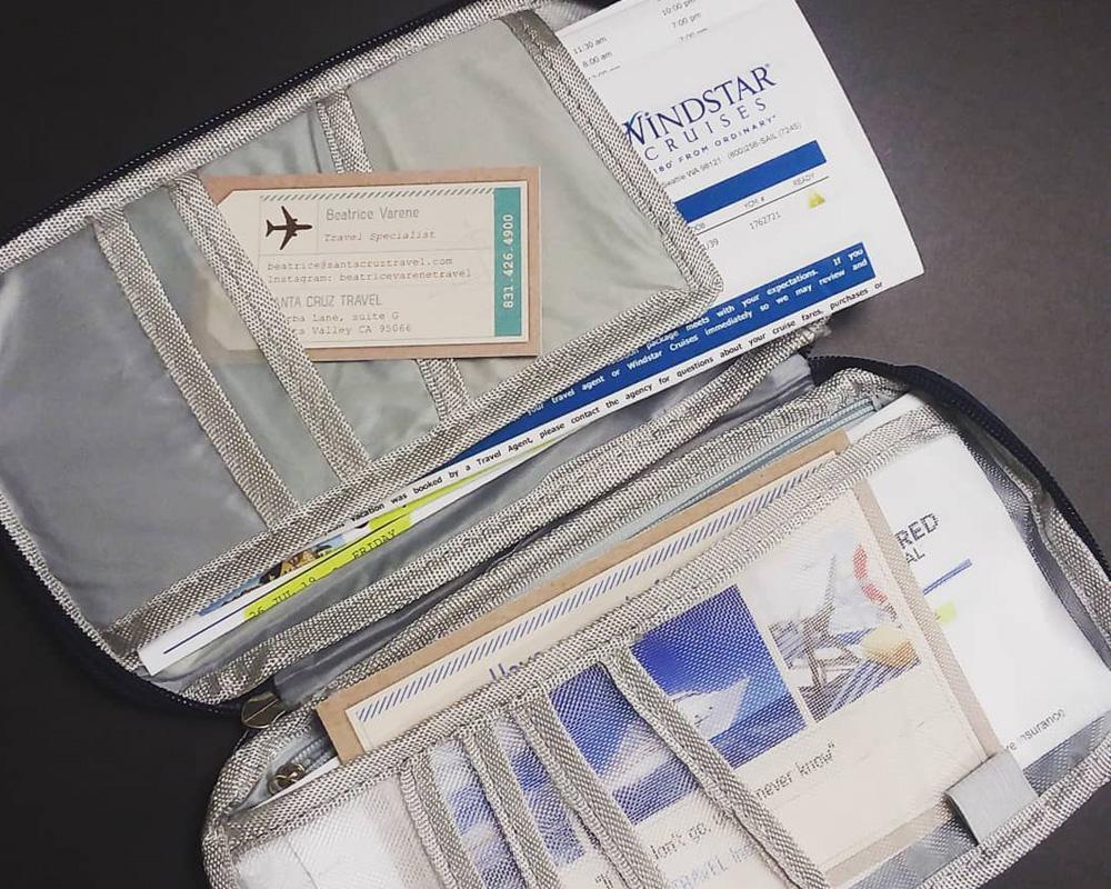 کیف مدارک سفر و بیمه